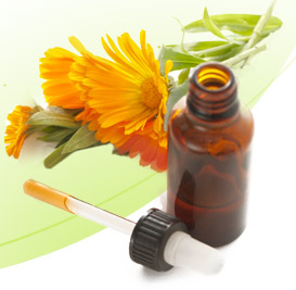 DIY Herbal Tinctures